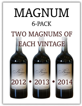 6-Pack Vertical of Magnums 2012-2014 Image